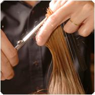 lake-tahoe-hair-cuts